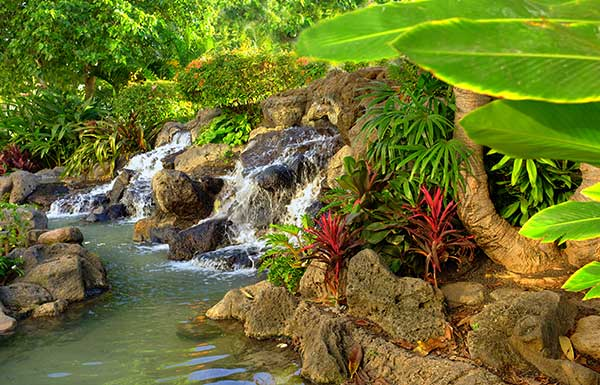or simply hole up at a resort to enjoy golfing dining shopping and spas however you choose to spend your time our hawaii wedding packages ensure a