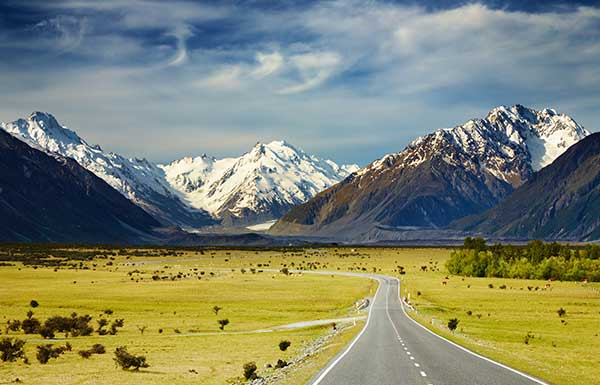 However You Chose To Experience New Zealand Can Be Sure That A Wedding Will Feast For The Eyes And Utterly Unforgettable