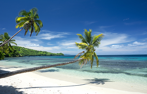 Or Join In On One Of The Many Resort Activities Like Snorkeling Wind Surfing Horseback Riding Walking Island Trails