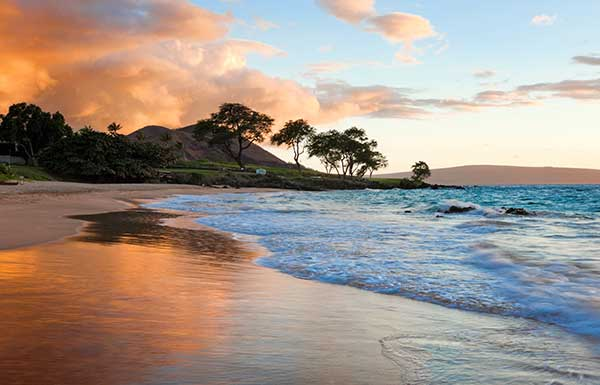 Hawaii destination weddings packages venues destination weddings or simply hole up at a resort to enjoy golfing dining shopping and spas however you choose to spend your time our hawaii wedding packages ensure a junglespirit Choice Image