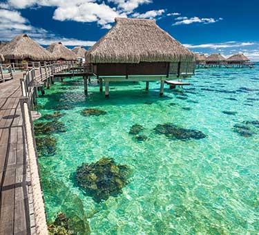 Islands Of Tahiti Weddings Packages